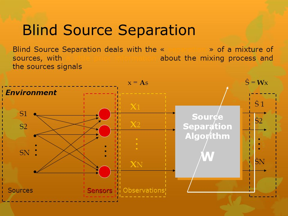 Source Separation Algorithm