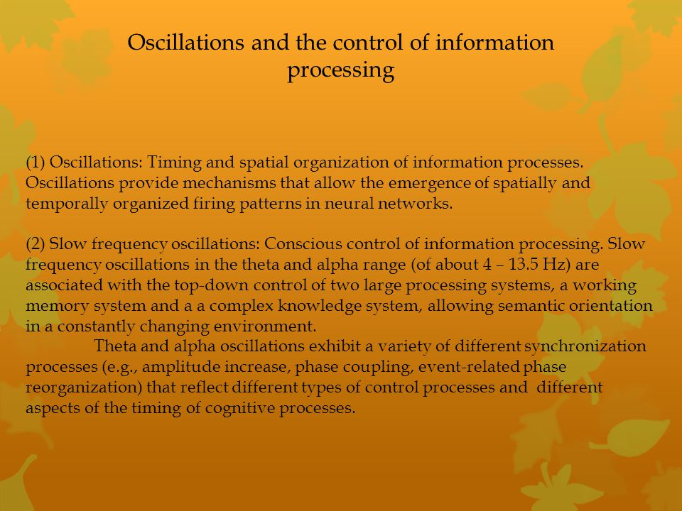 Oscillations and the control of information processing