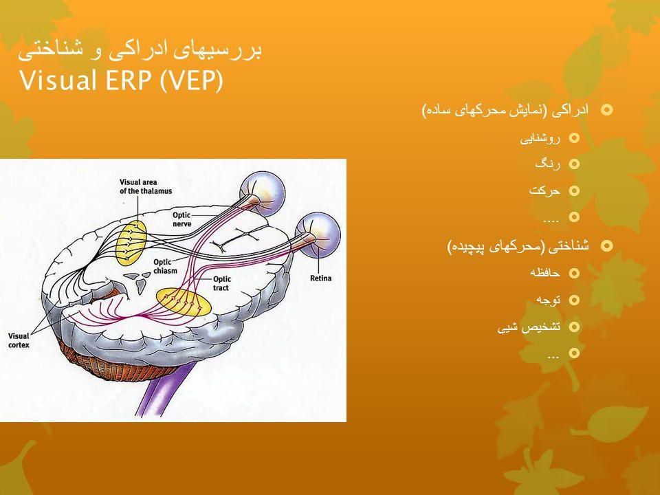 بررسیهای ادراکی و شناختی Visual ERP (VEP)