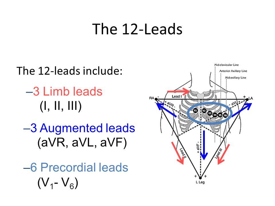 The 12-Leads The 12-leads include: 3 Limb leads (I, II, III)