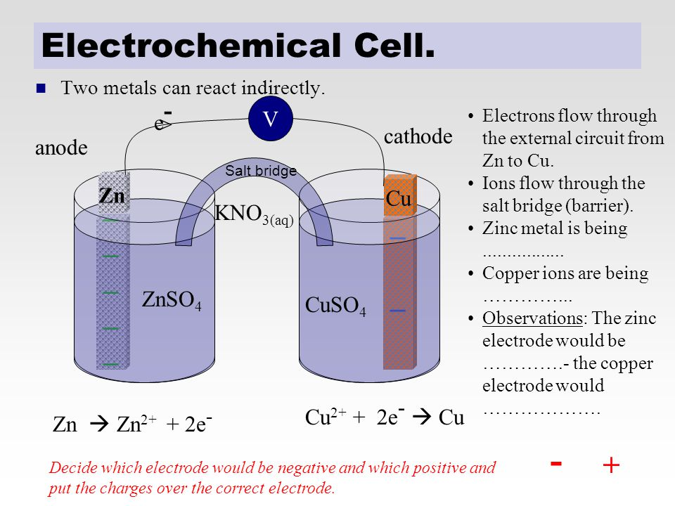 - Electrochemical Cell. _ _ + e- V > cathode anode KNO3(aq) Zn Cu