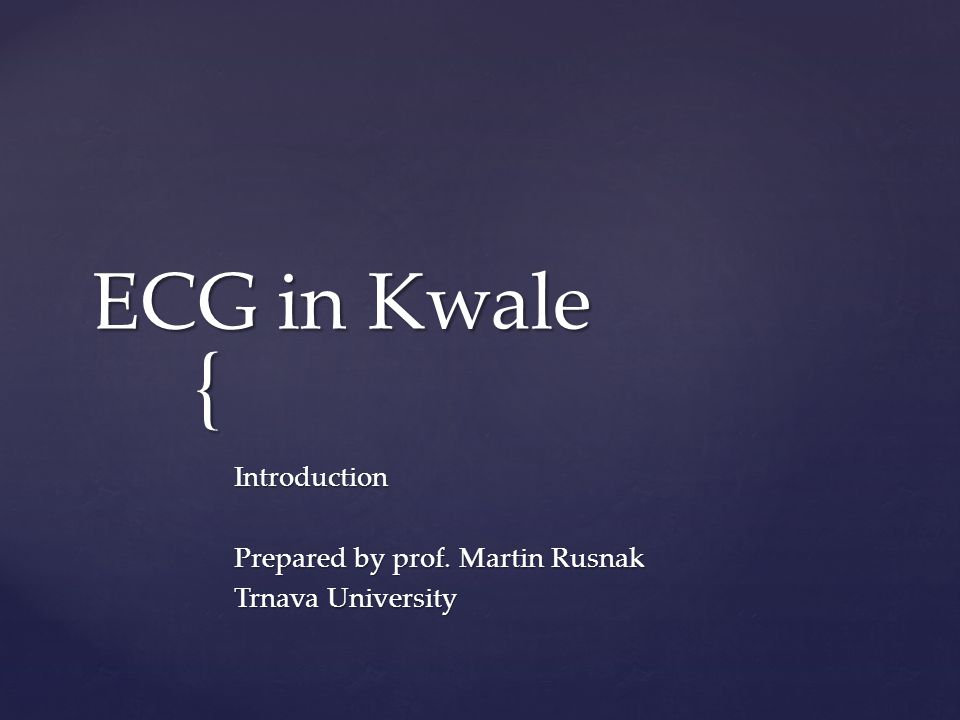Introduction Prepared by prof. Martin Rusnak Trnava University
