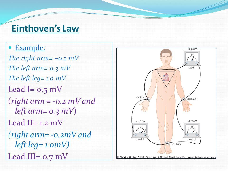 Einthoven's Law Lead I= 0.5 mV
