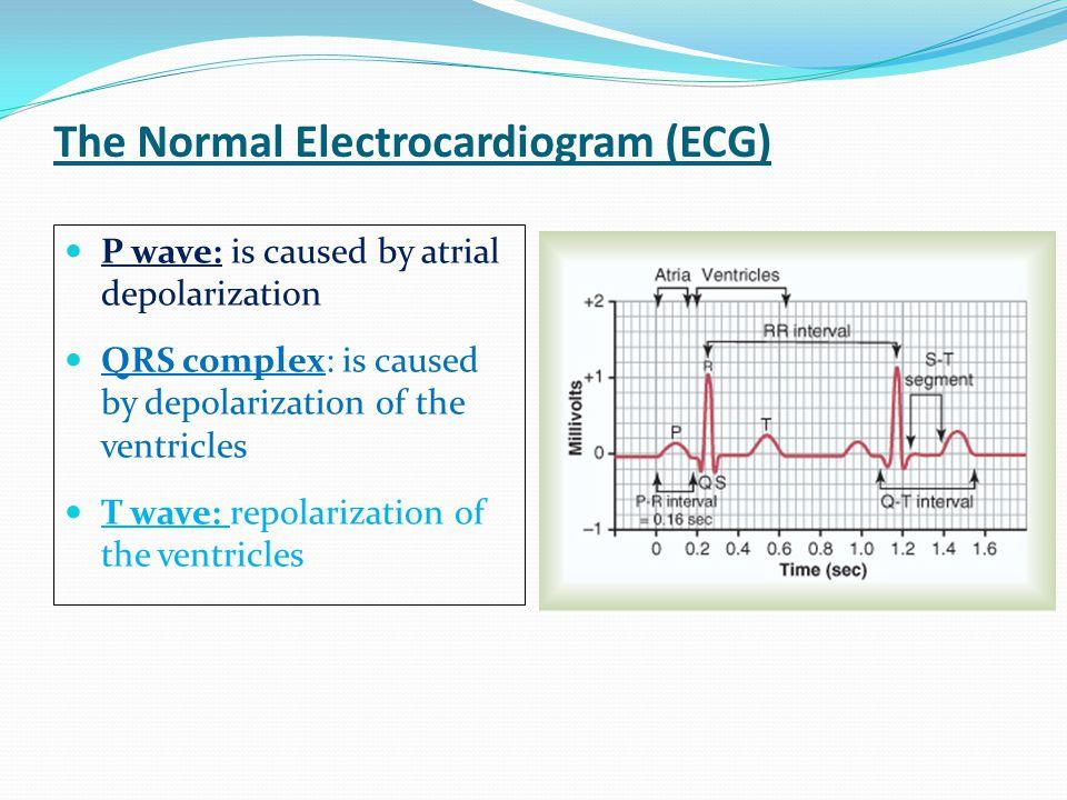 The Normal Electrocardiogram (ECG)