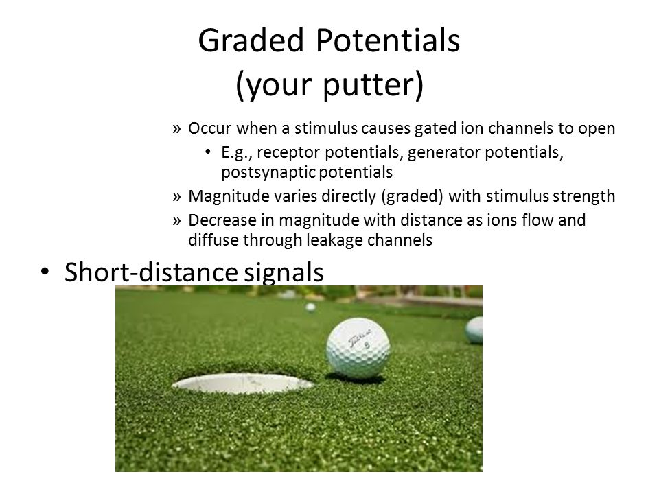 Graded Potentials (your putter)