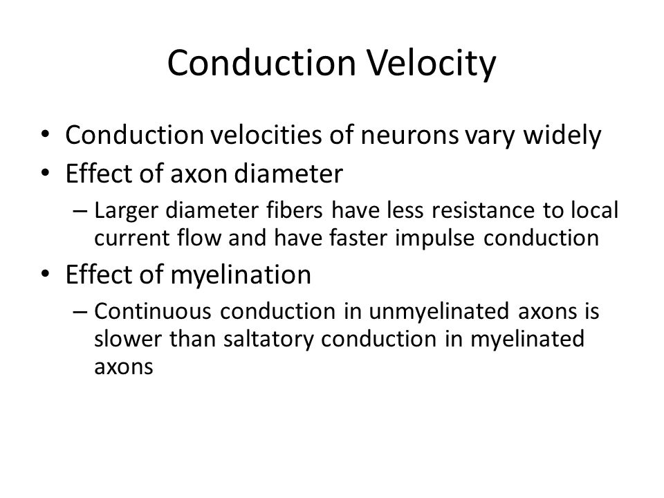 Conduction Velocity Conduction velocities of neurons vary widely