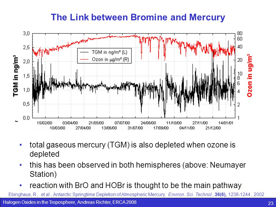 The Link between Bromine and Mercury