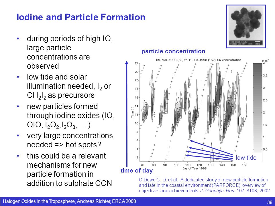 Iodine and Particle Formation