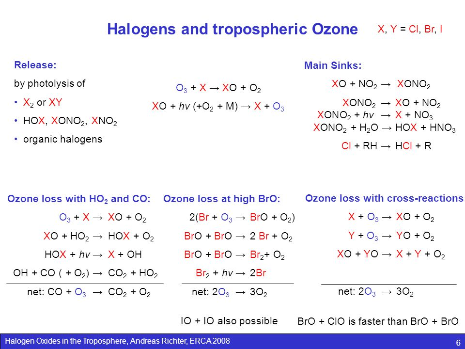 Halogens and tropospheric Ozone