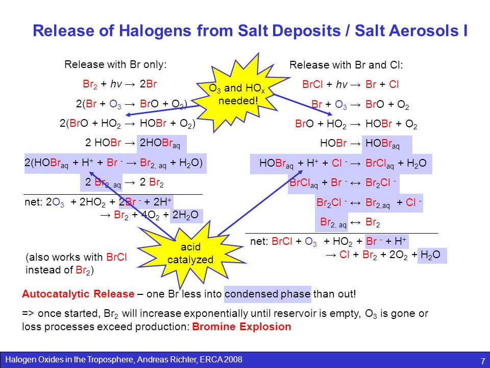Release of Halogens from Salt Deposits / Salt Aerosols I
