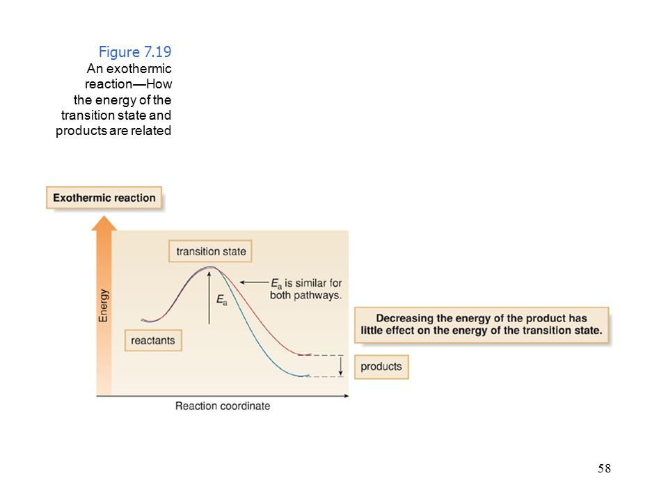 Figure 7.19 An exothermic reaction—How the energy of the