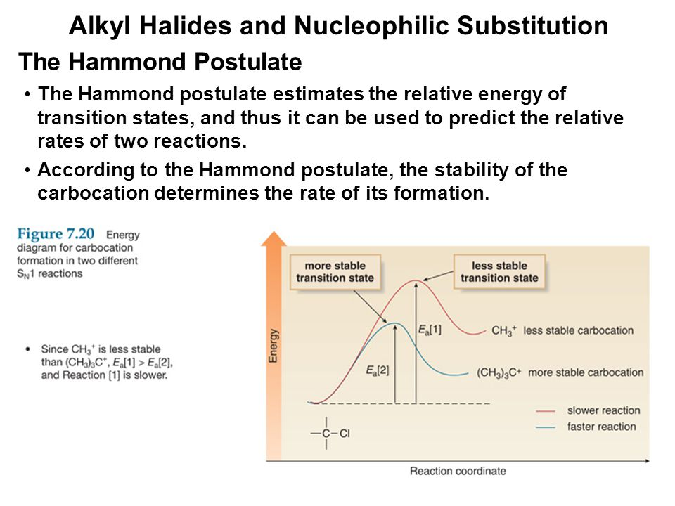 Alkyl Halides and Nucleophilic Substitution