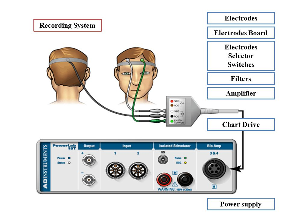 Electrodes Recording System. Electrodes Board. Electrodes. Selector. Switches. Filters. Amplifier.