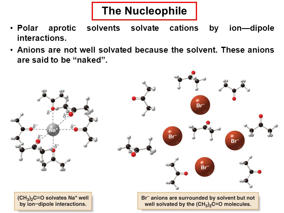 The Nucleophile Polar aprotic solvents solvate cations by ion—dipole interactions.