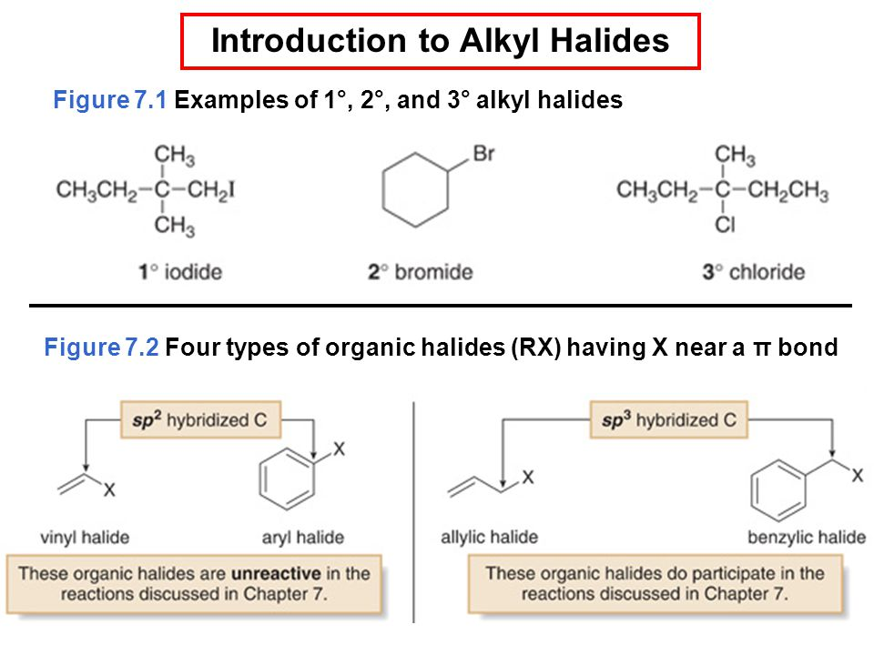 Introduction to Alkyl Halides