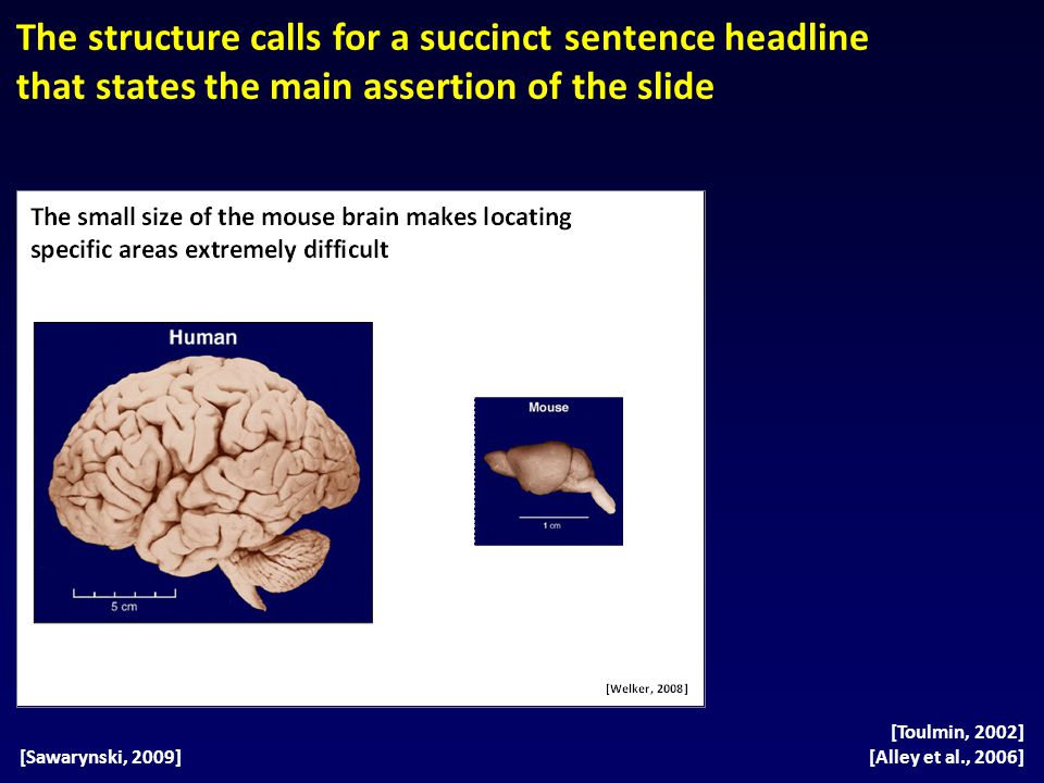 The structure calls for a succinct sentence headline that states the main assertion of the slide