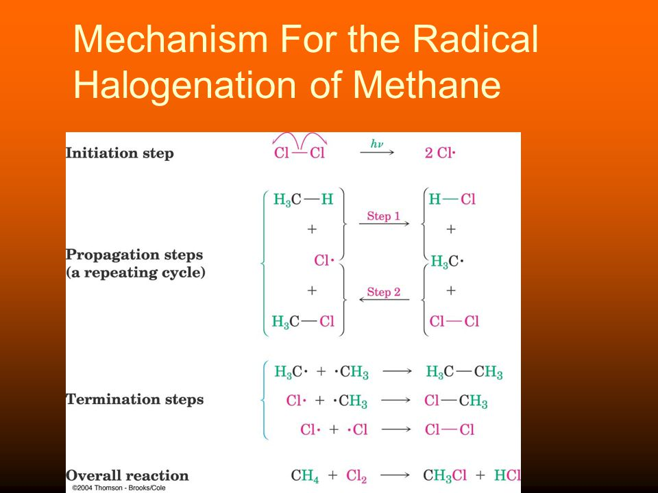 Mechanism For the Radical Halogenation of Methane
