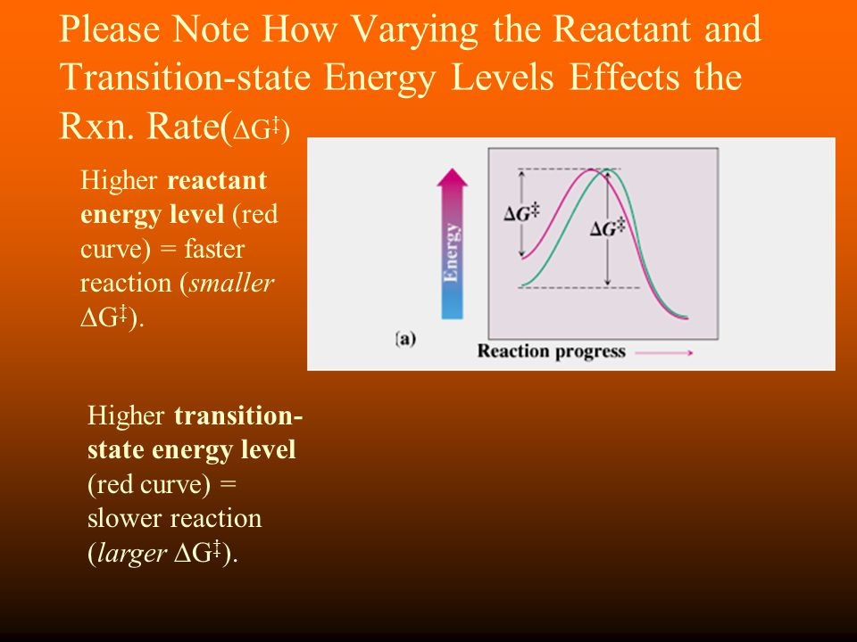 Please Note How Varying the Reactant and Transition-state Energy Levels Effects the Rxn. Rate(G‡)