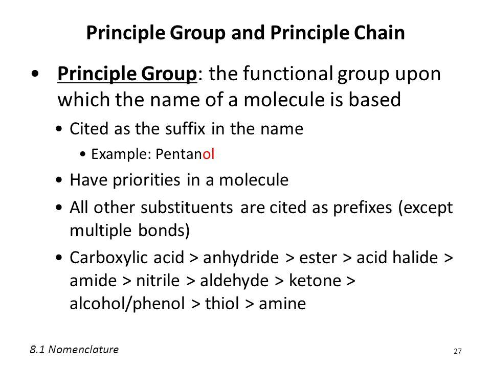Principle Group and Principle Chain