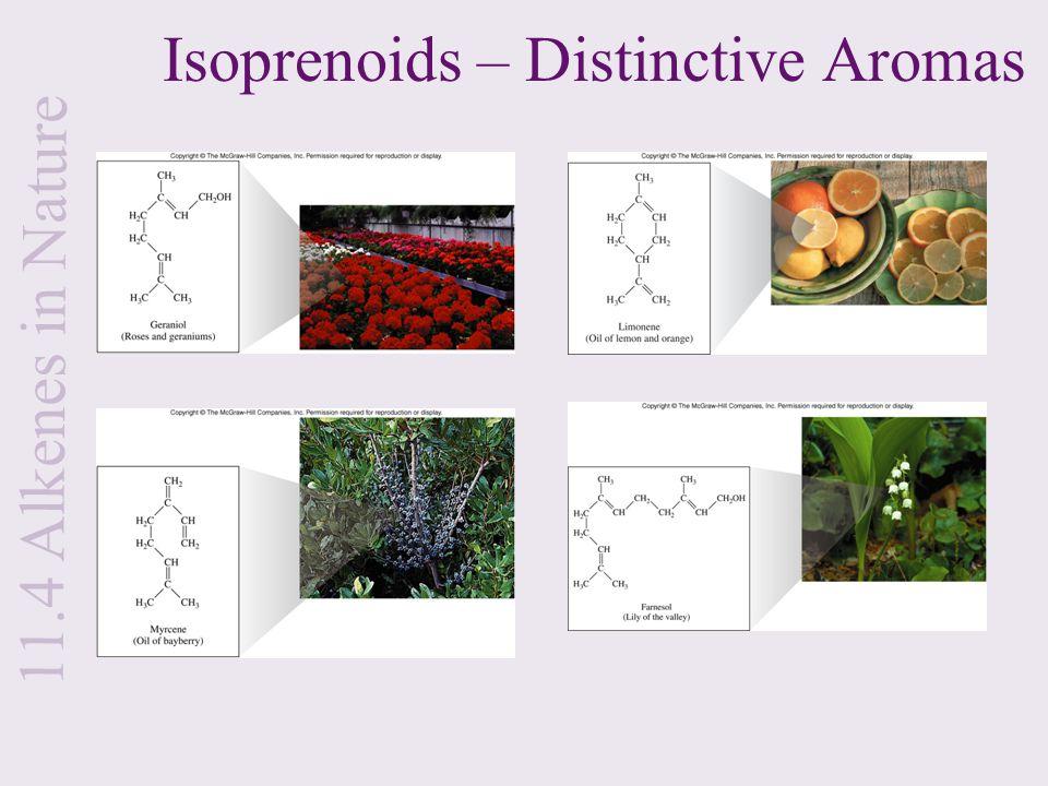 Isoprenoids – Distinctive Aromas