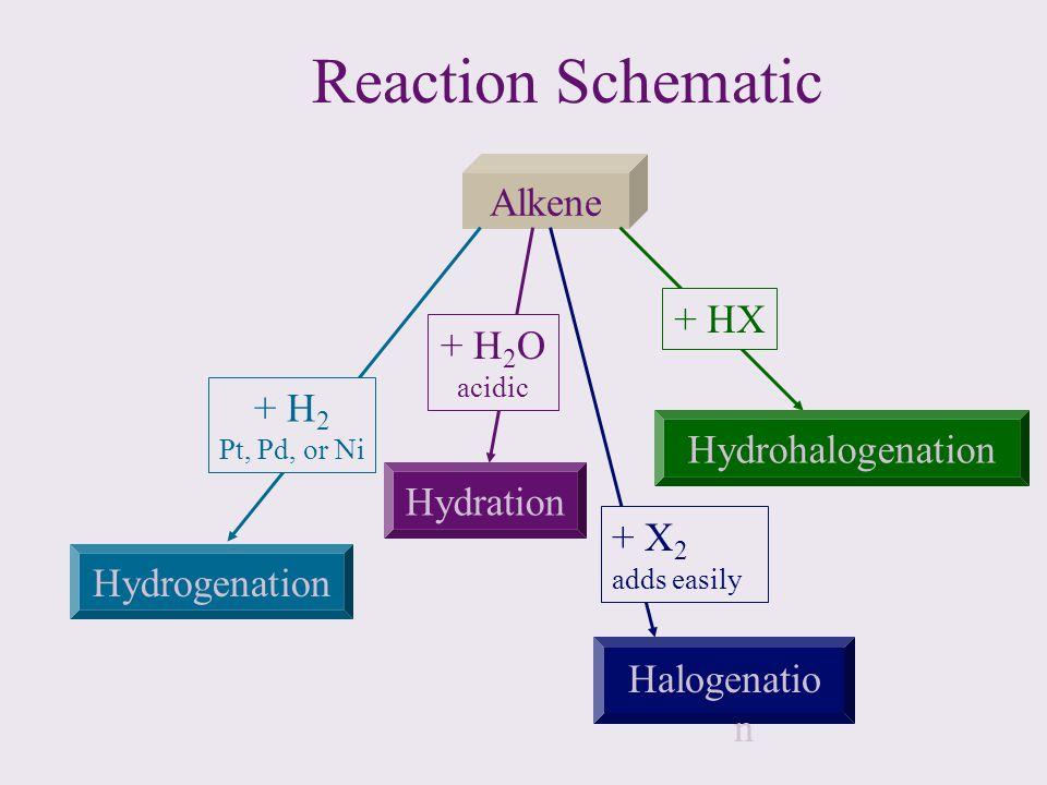 Reaction Schematic Alkene + HX + H2O + H2 Hydrohalogenation Hydration