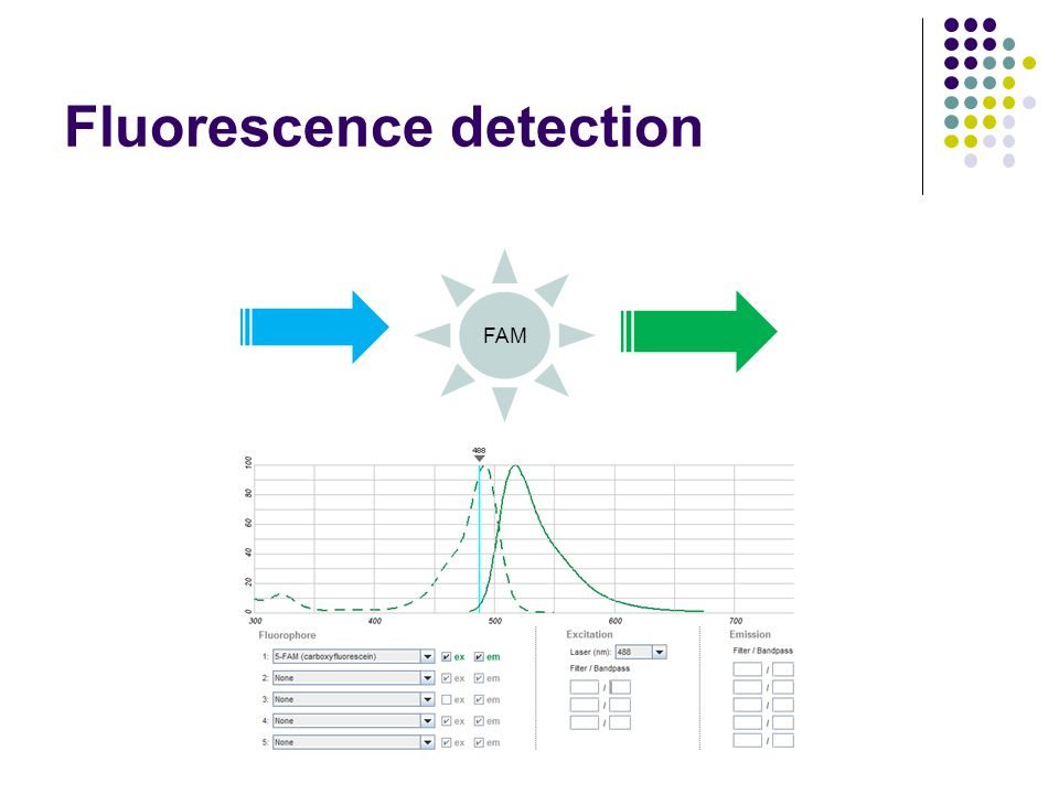 Fluorescence detection