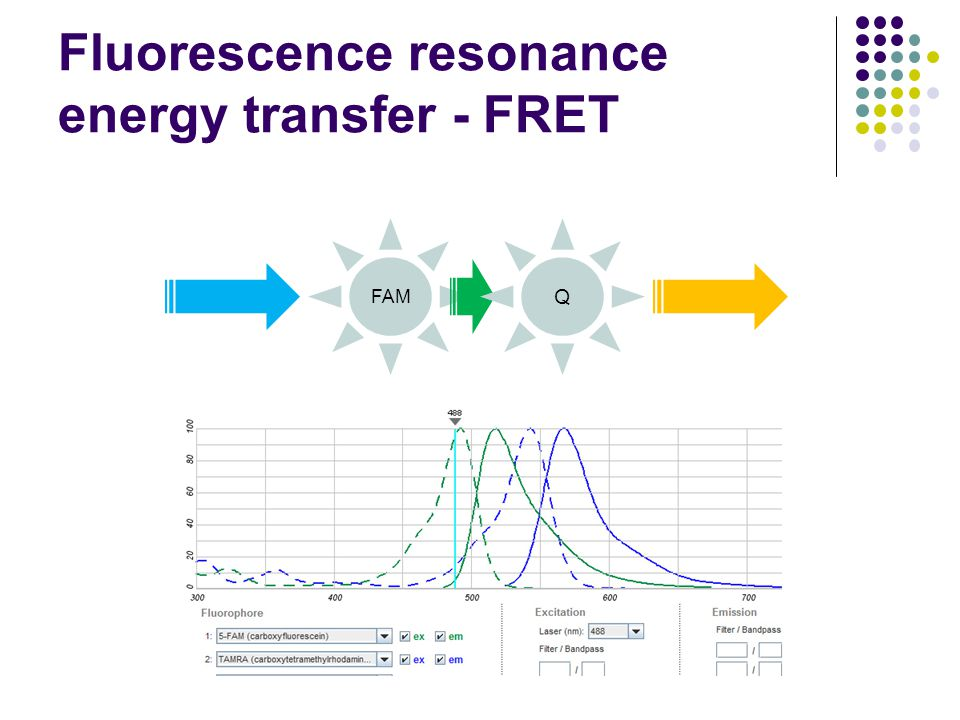 Fluorescence resonance energy transfer - FRET