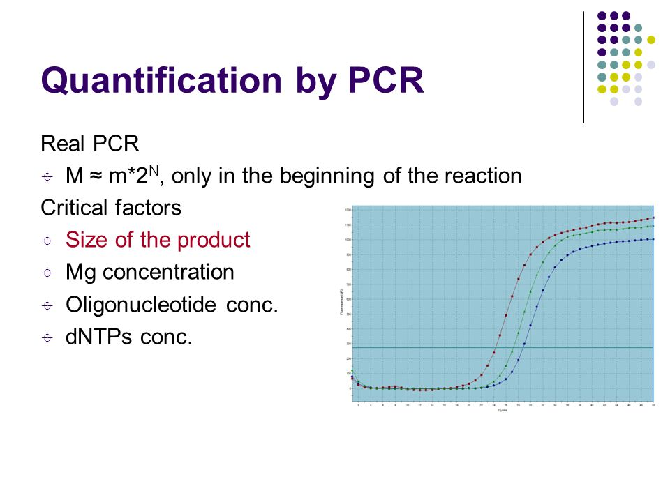 Quantification by PCR Real PCR