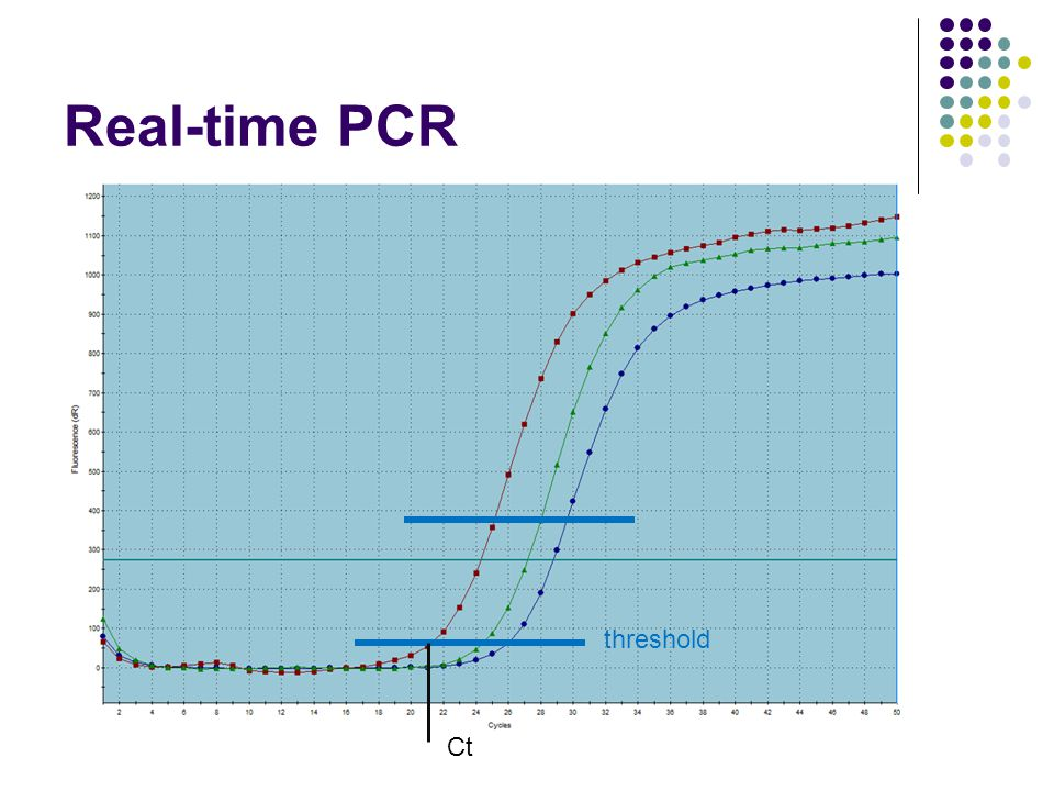 Real-time PCR threshold Ct 8