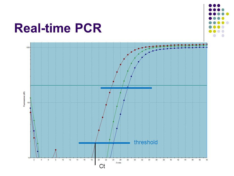 Real-time PCR threshold Ct 9