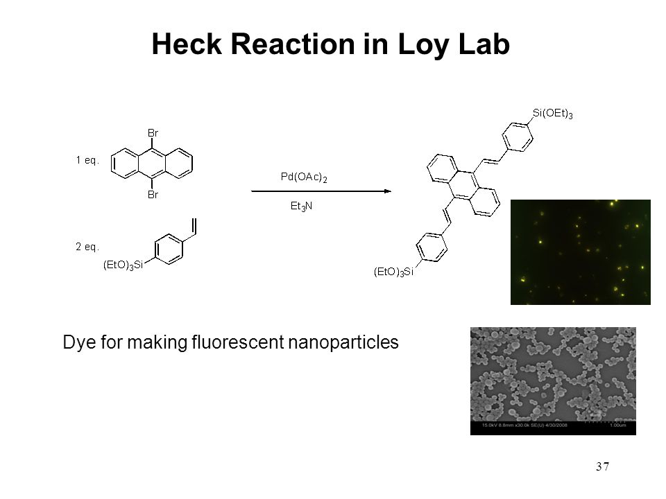 Heck Reaction in Loy Lab