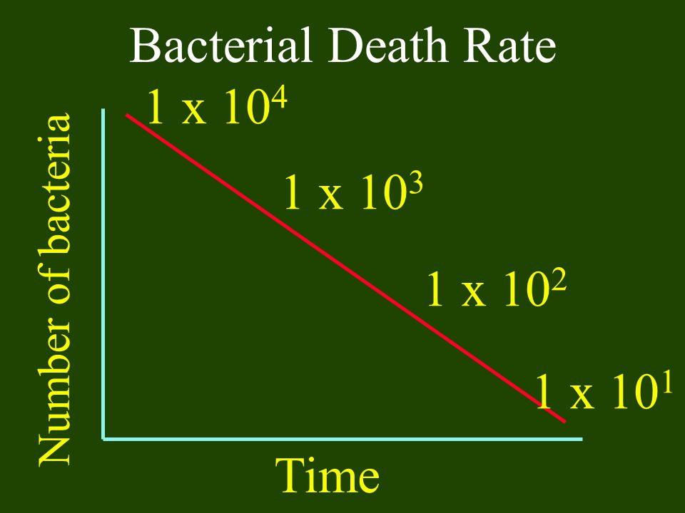 Bacterial Death Rate 1 x 104 1 x 103 1 x 102 1 x 101 Time