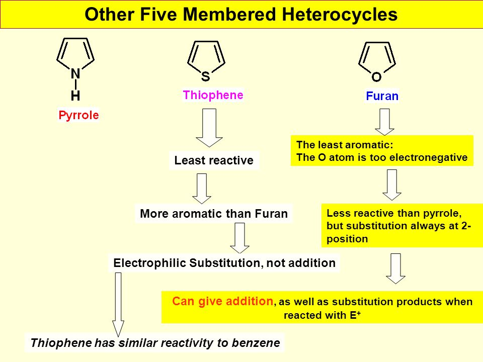 Other Five Membered Heterocycles