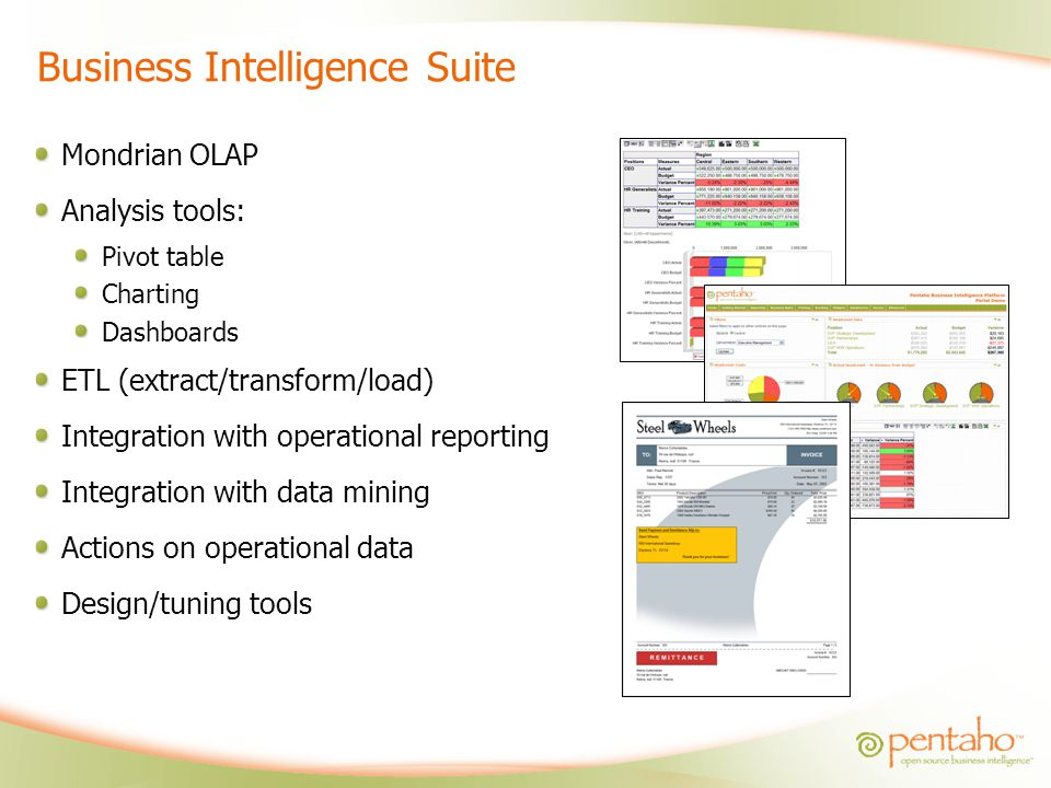 Business Intelligence Suite