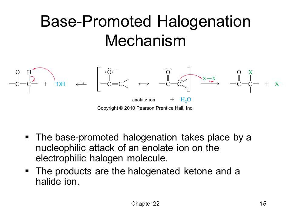 Base-Promoted Halogenation Mechanism