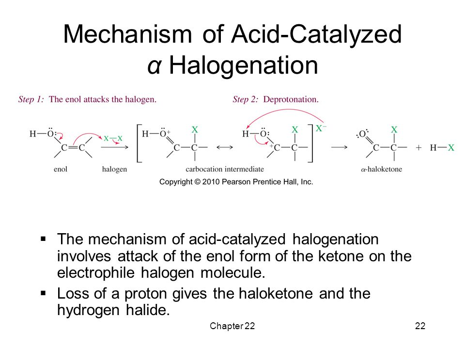 Mechanism of Acid-Catalyzed α Halogenation