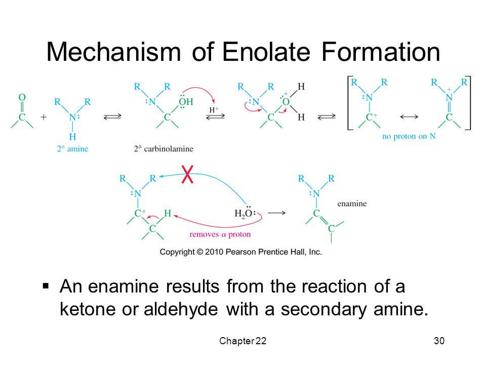 Mechanism of Enolate Formation