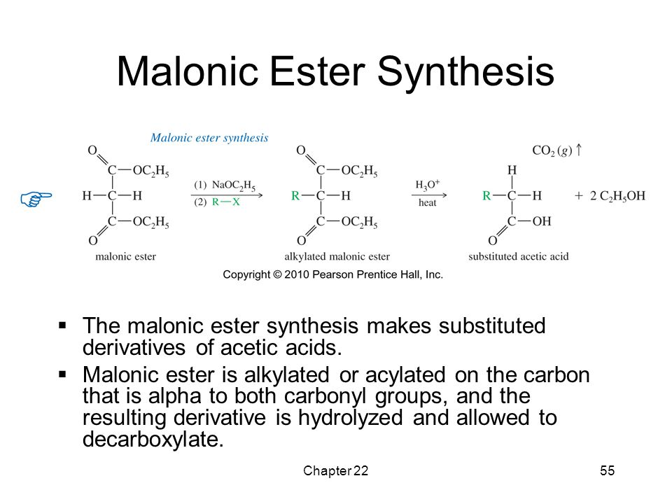 Malonic Ester Synthesis