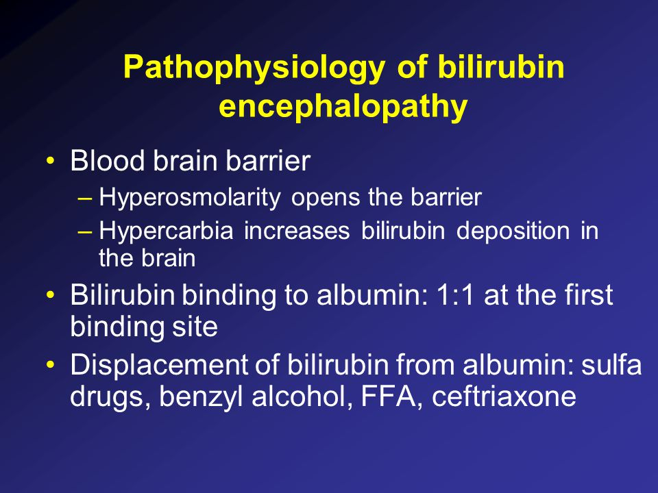 Pathophysiology of bilirubin encephalopathy