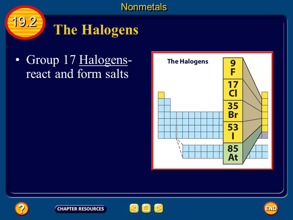Nonmetals 19.2 The Halogens Group 17 Halogens- react and form salts