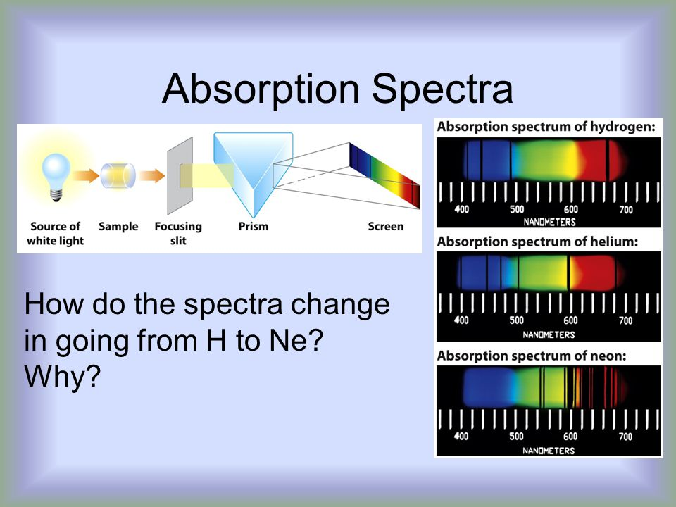Absorption Spectra How do the spectra change in going from H to Ne Why
