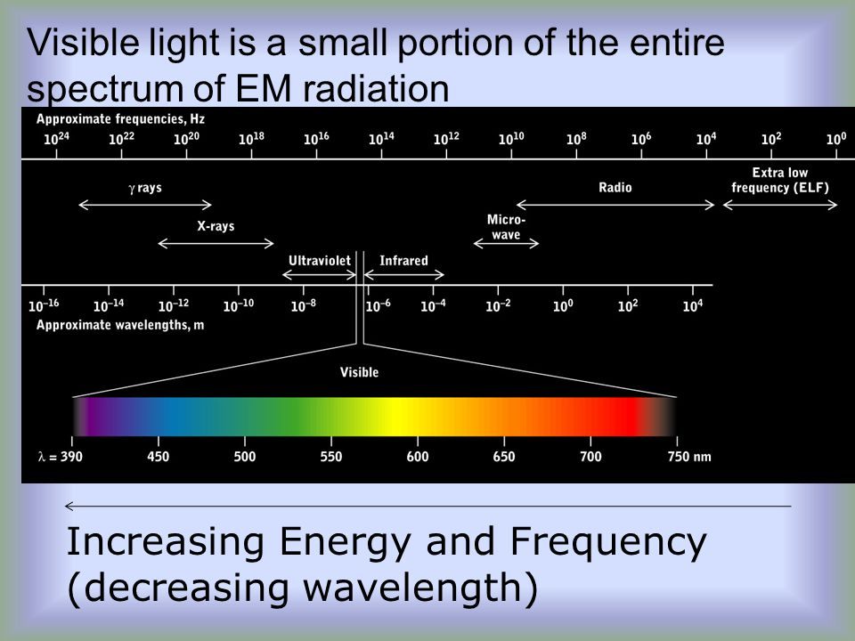 Visible light is a small portion of the entire spectrum of EM radiation