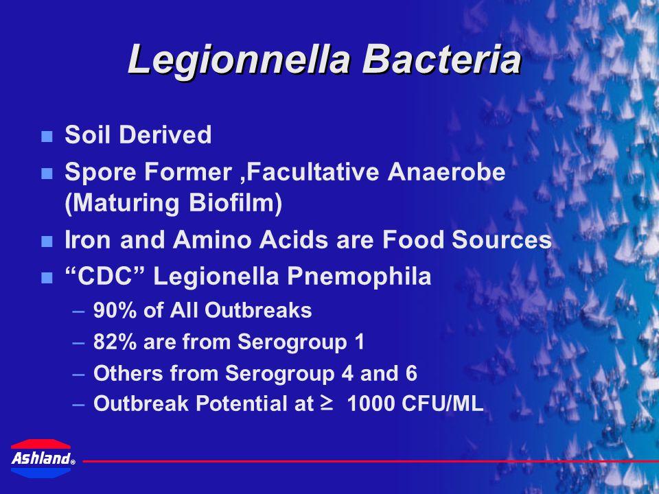 Legionnella Bacteria Soil Derived