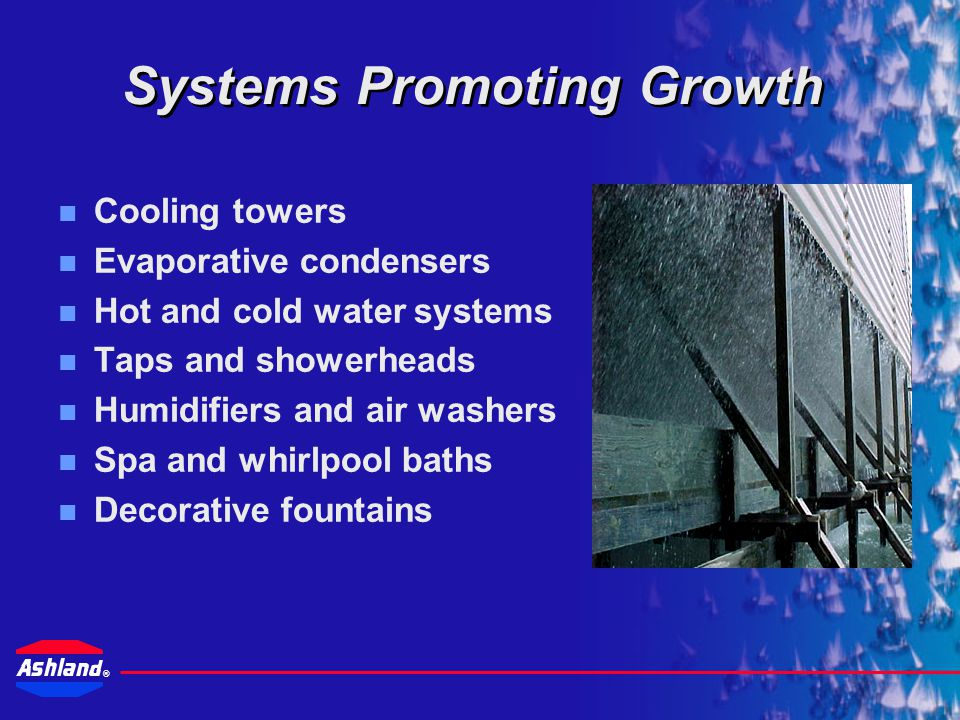 Systems Promoting Growth