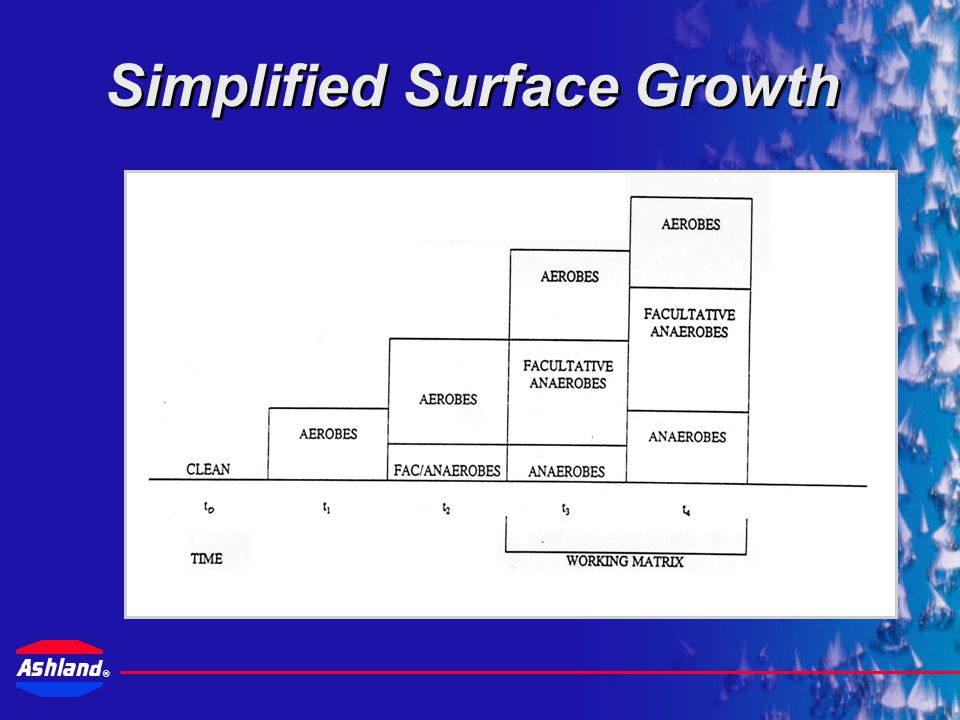 Simplified Surface Growth