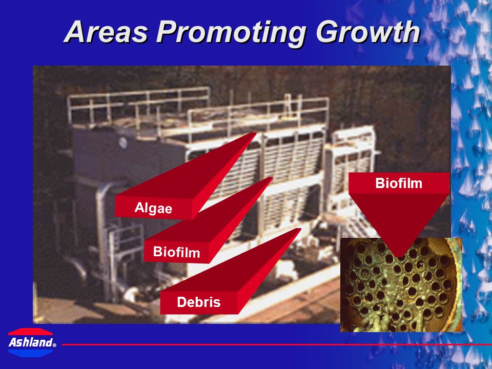 Areas Promoting Growth