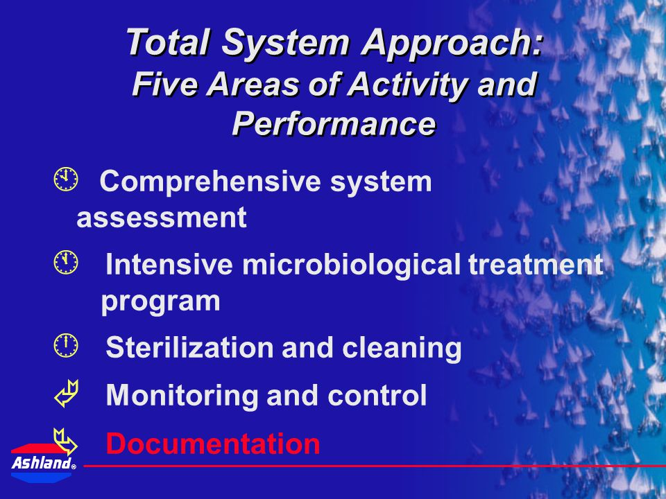 Total System Approach: Five Areas of Activity and Performance