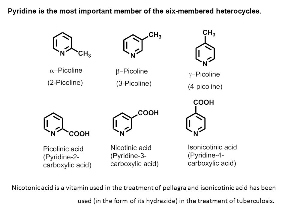Pyridine is the most important member of the six-membered heterocycles.