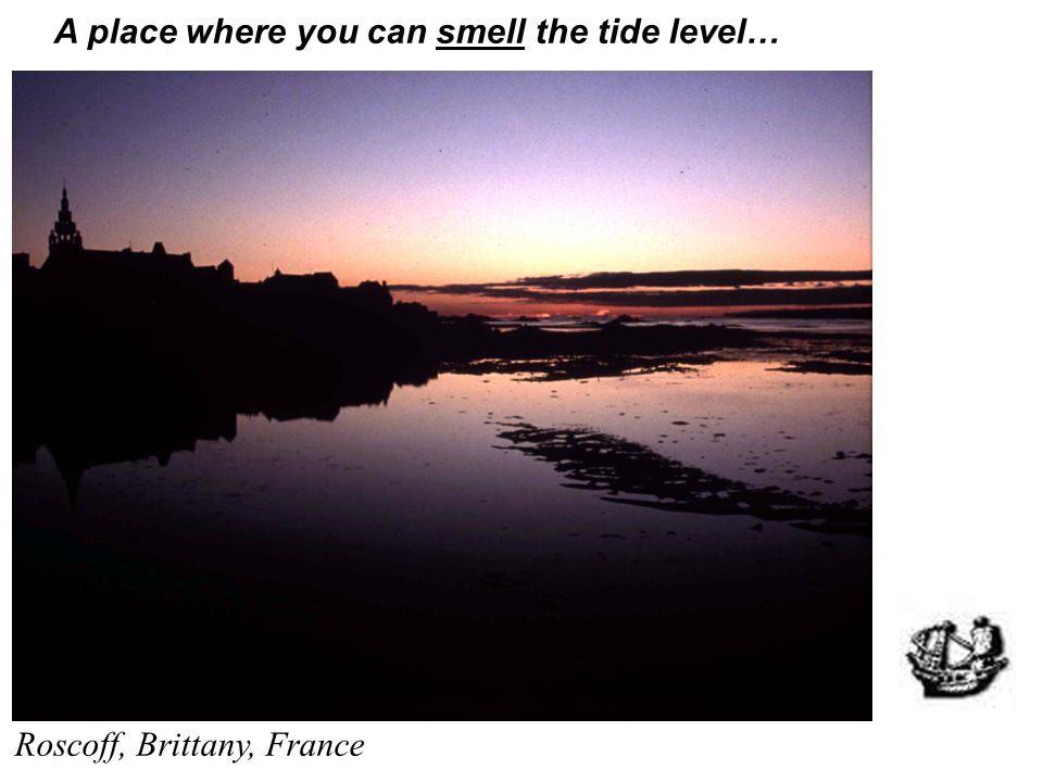 A place where you can smell the tide level…