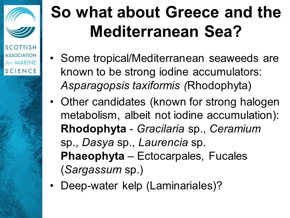 So what about Greece and the Mediterranean Sea